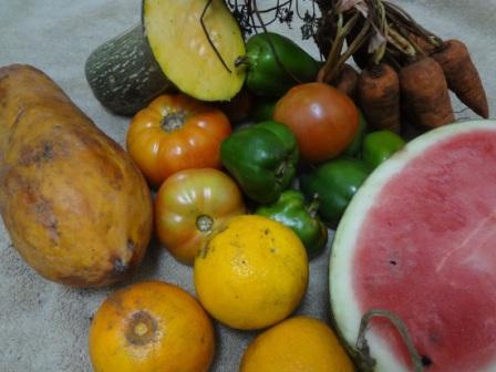 organic produce cuba