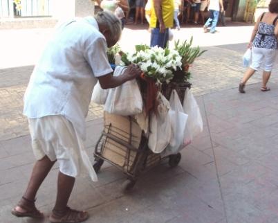 street flower lady